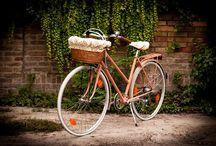 VintageBringa-LISA / Egyedi restaurált női kerékpárok-LISA-vintage bicycle www.vintagebringa.hu