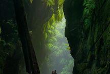 Places I'd Like to Go / by Nicki Salisbury