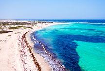 Playas del Caribe / Arena blanca y palmeras