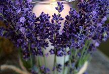The wonderful world of scented candles / Great pictures with inspirations of what you can do with candles, especially scented candles!