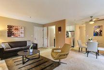 Travel in Sunnyvale, CA / Beautiful #vacationrental home in #Sunnyvale,CA