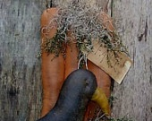 Fall Finds / by Lisa Darley-Graham