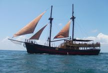 Jolly Roger II / The world famous Pirate Ship awarded with five stars for two years in a row from TripAdvisor! at Paphos Harbour.