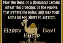 * Hump * Day * / by Ashley Krager