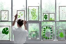 Nature Deco Good Ideas / by Rosas Amorosas