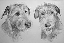 Hundeportrait Tierportrait Bleistiftzeichnung / Lassen Sie ein Tierportrait nach Ihrem Foto zeichnen. http://www.galerie-artaktuell.de/