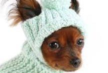 Вязание для животных
