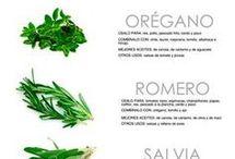 cocina > hierbas como cocinar