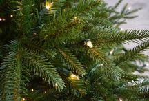 *Noël, tout simplement!*