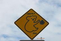Sign Humor