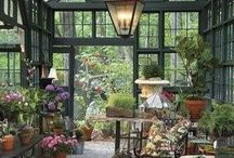 Gardenhouse and garden ideas
