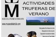 Cosas que pasan en Navarra / Navarra es un continuo bullir de actividades relacionadas con la cultura, la historia, las tradiciones, la gastronomía...
