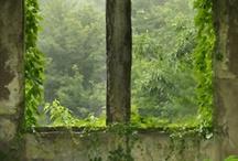 nature reclaims ruins