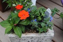 Goebbert's Custom Planting