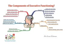 Metacognition & Executive function
