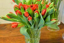 San Valentín / Hemos creado una colección de arreglos florales pensando en San Valentín. www.llorensyduran.eu