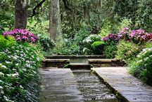 Beautiful Landscaping Ideas for your Home