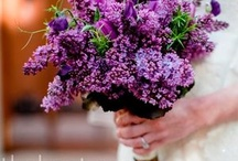 Lovely lovely Flowers