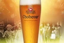 CZECH BEER TOURS & TOURISM / Collection of brochures from Czech Republic related to beer tourism and travel