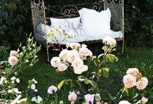 Heavenly garden / by Maria Antoniou
