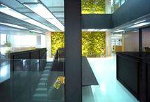 Architecture: Green Walls