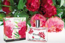 Fleur de l'année / Chaque année, Fragonard célèbre une fleur. Celle-ci fait l'objet d'une gamme de produits parfumés éphémères, le temps d'une année.