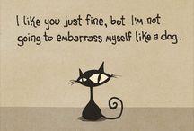 Cat - Brainless Tales