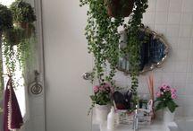 Piccolo e confortevole bagno / L'inserimento di piante pendenti ed un vassoio trasformato in specchio cambiano l'aspetto di un piccolo bagno che da bagno di servizio diventa un bagno per ospiti.