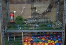 Pet cages&Toys