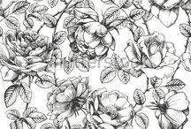desenho flores