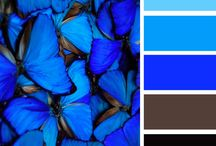 Color palette Nature / Colors by Alina Babina