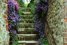 Paths, steps, doorways and gates... / It's the little details that make a garden gorgeous - especially in middle-sized gardens