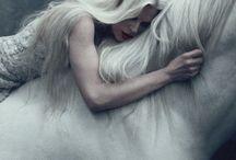 horse photoshoot ○.•