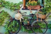 Femmina Bike