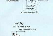 fly proportion-proporcie musiek