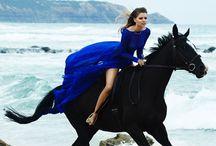 Horse sess