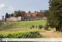 Gaiole in Chianti / about Gaiole and Castles in the area