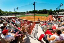 The BOX Seat at Sacred Heart University, Conneticut / The BOX Seat 907 provides luxurious, upholstered yet economical seating for the crowd at the recently redeveloped campus field at Sacred Heart University.