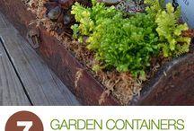 Outdoor Ideas / Garden