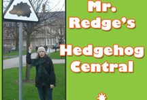 Mr. Redge's Hedgehog Central / Reginald T. Hedgehog here and I'm JMan's trusty sidekick in Geek Club Books new children's storybook app! This is my board where I can share my own hedgehoggy style with you!