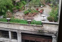 city garden,small garden,balcony,terrasse,porch / balcony,small garden,patio,city gardening