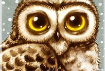 ANIMALI gufi owl
