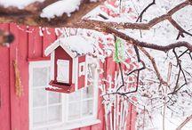Cold cold Winter / by Suse van De Bollingers