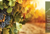 Ascension Wine Estate / All about our Incredible Estate, sharing ideas, wine, cuisine and more
