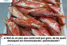 Moll / Salmonete / Aquí trobaràs curiositats sobre el moll / Aquí encontrarás curiosidades sobre el salmonete