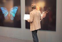 Exhibition / Show / Installation