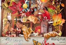 Rising Fall / https://www.pickleberrypop.com/shop/product.php?productid=29503&cat=0&page=1