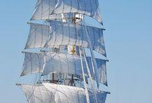 Ship's