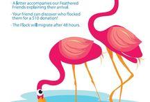 Fundraiser Ideas / by Scarlett Warwick