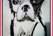 Boston Terrier / by Aimee Jones
